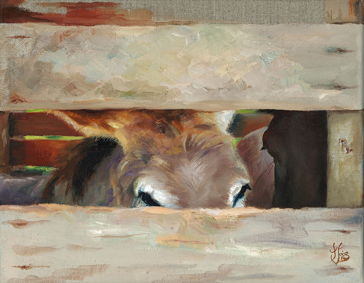 Midday Siesta - Oil on canvas