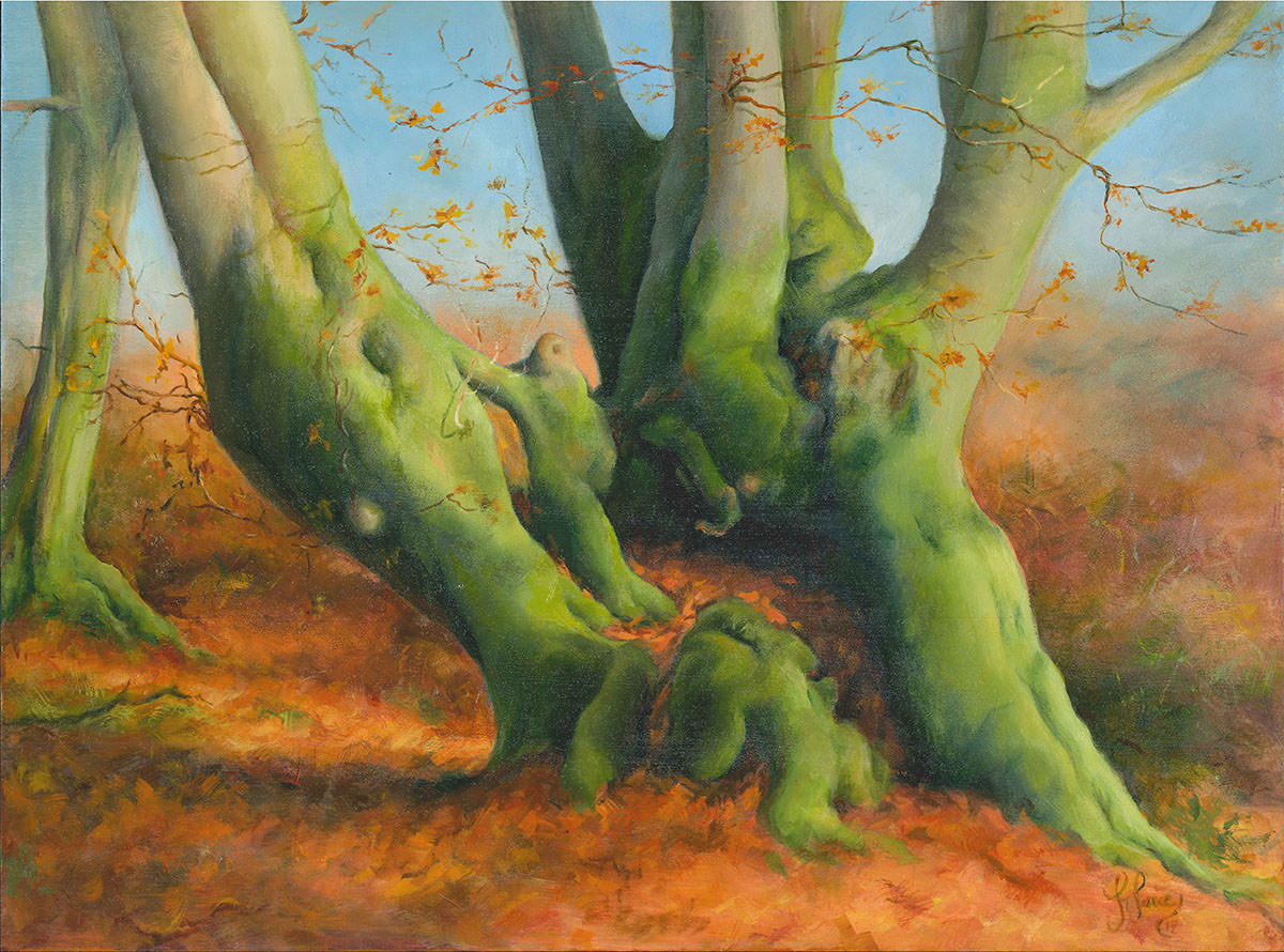 Wentwood Beech - Oils on wood panel - 40 x 30 cm
